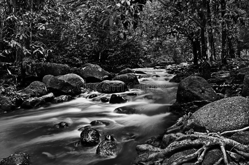 Ποταμός κάτω από το ρεύμα σε γραπτό στοκ φωτογραφίες με δικαίωμα ελεύθερης χρήσης