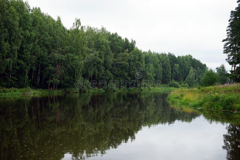 Ποταμός και δάσος στοκ φωτογραφία με δικαίωμα ελεύθερης χρήσης