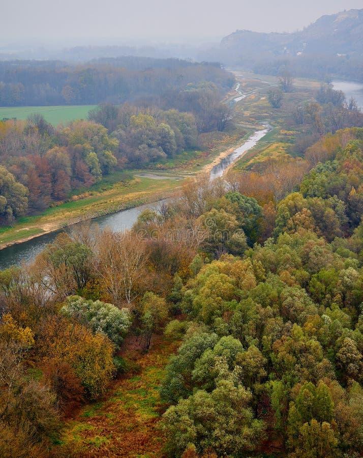 Ποταμός και δέντρα Morava στοκ φωτογραφίες