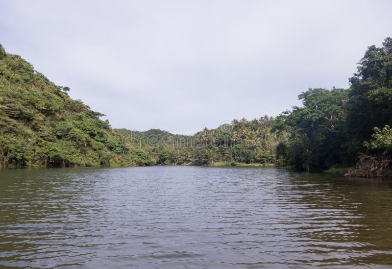 Ποταμός και ζούγκλα στοκ φωτογραφίες
