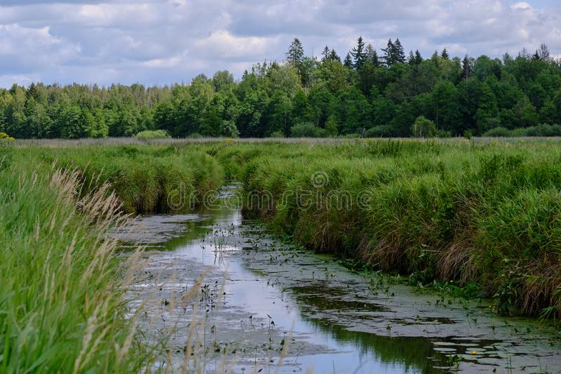 Ποταμός Λουτόβνια το καλοκαίρι στοκ φωτογραφίες