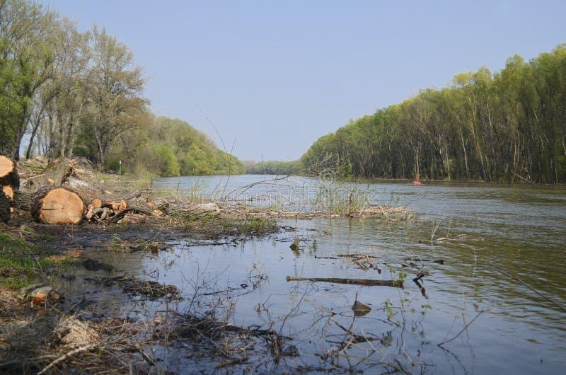 Ποταμός μετά από την ξύλινη κοπή στοκ φωτογραφία με δικαίωμα ελεύθερης χρήσης