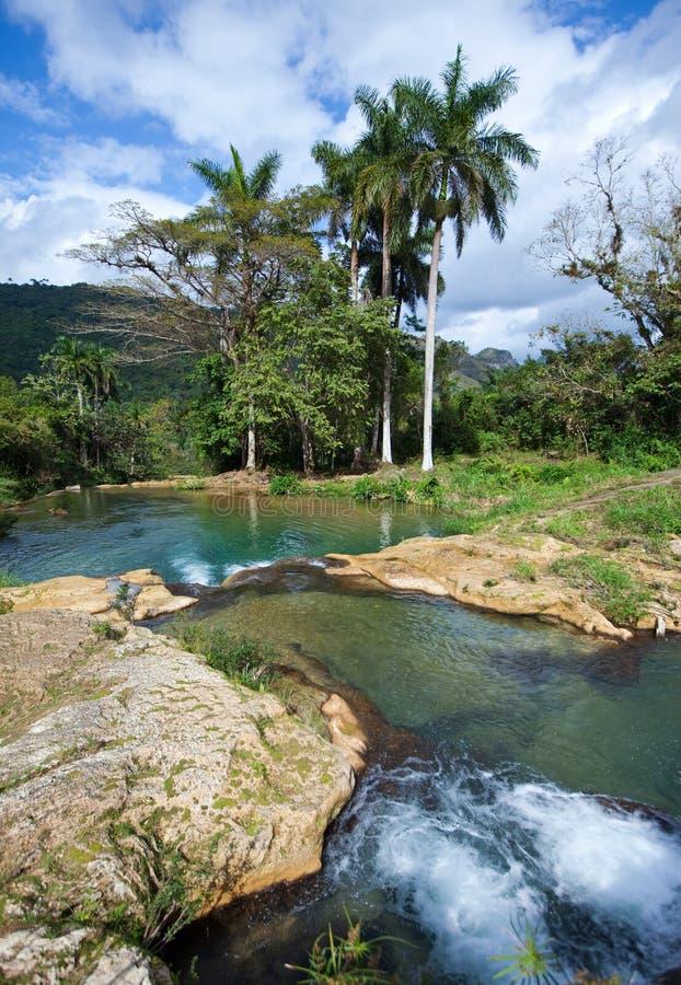 Ποταμός με τα στάδια στο πάρκο Soroa Κούβα στοκ εικόνα
