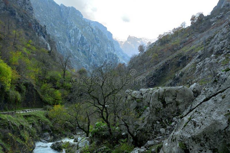 Ποταμός Ντούιε στο Picos de Europa στις Αστούριες στοκ εικόνες