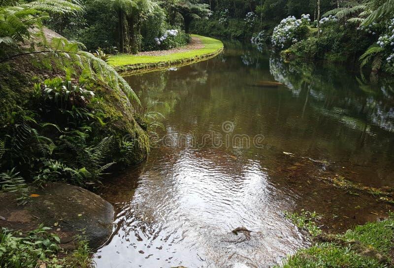 Ποταμός ομορφιάς lanscape γεννημένος στοκ φωτογραφίες με δικαίωμα ελεύθερης χρήσης