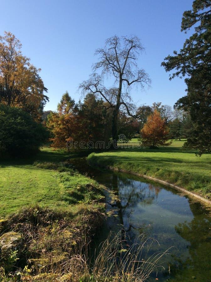 Ποταμός πάρκων πτώσης φθινοπώρου στοκ φωτογραφίες