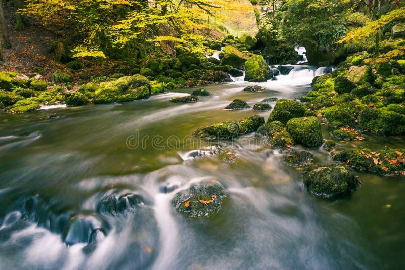 Ποταμός που διατρέχει των πράσινων Mossy βράχων στο δάσος πάρκων με το τέλος στοκ φωτογραφία με δικαίωμα ελεύθερης χρήσης