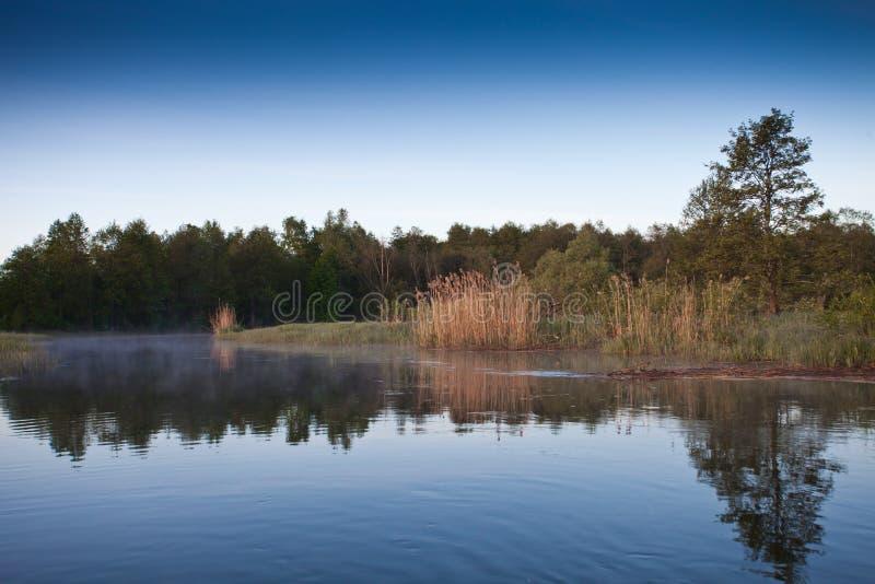 ποταμός πρωινού αλιείας αυγής ποταμός, τράπεζες που εισβάλλονται με το δάσος στοκ φωτογραφία με δικαίωμα ελεύθερης χρήσης