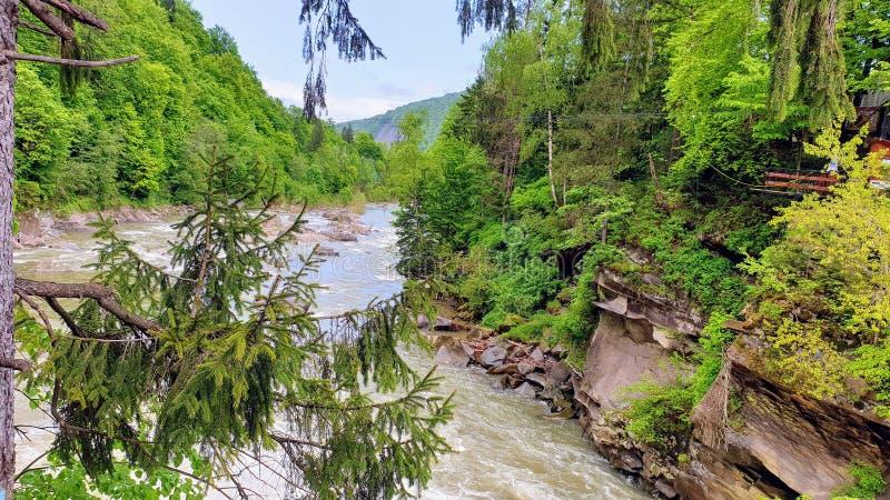 Ποταμός στα βουνά στοκ φωτογραφία