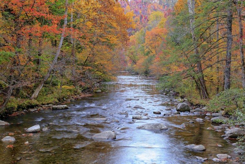 Ποταμός στα καπνώδη βουνά στοκ εικόνα με δικαίωμα ελεύθερης χρήσης