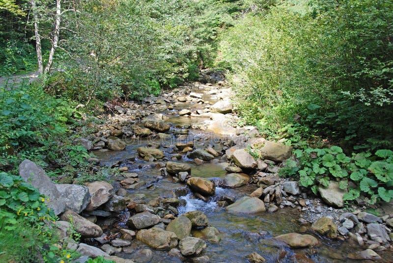 Ποταμός στα Καρπάθια βουνά στοκ φωτογραφία με δικαίωμα ελεύθερης χρήσης