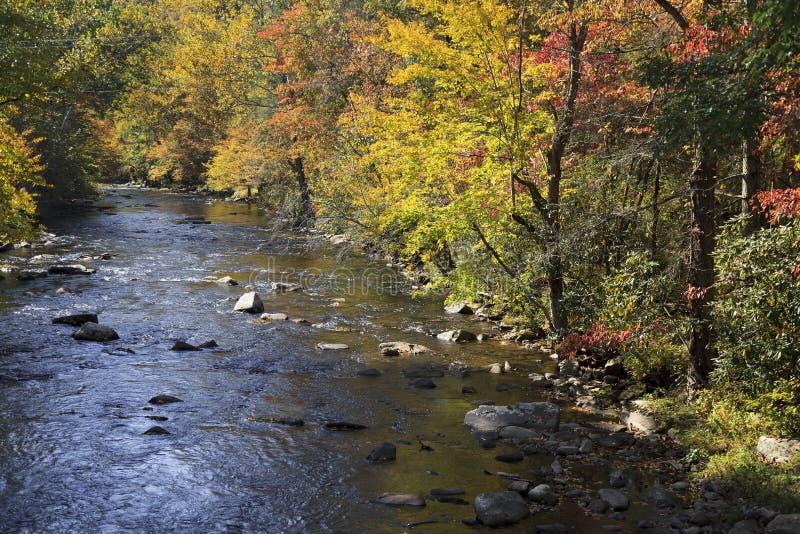 Ποταμός στη βόρεια Καρολίνα το φθινόπωρο στοκ φωτογραφία με δικαίωμα ελεύθερης χρήσης