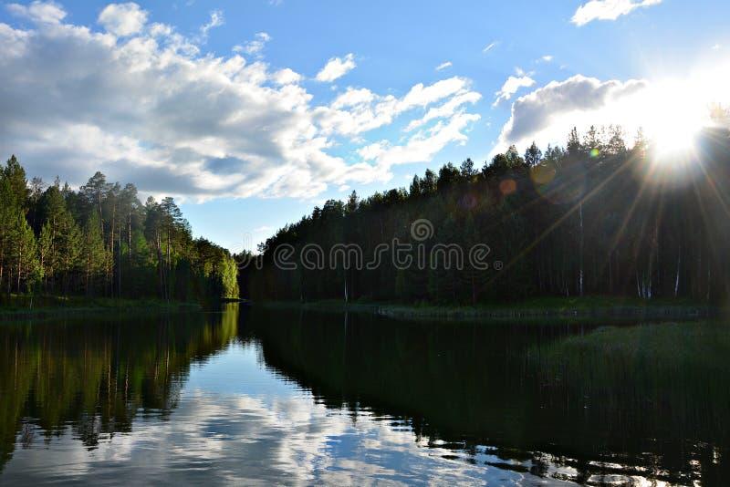 Ποταμός στις χρυσές ακτίνες του ήλιου βραδιού στοκ εικόνα