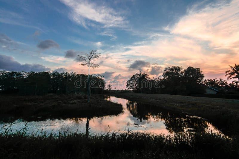 Ποταμός στο έλος στο ηλιοβασίλεμα στοκ εικόνα με δικαίωμα ελεύθερης χρήσης