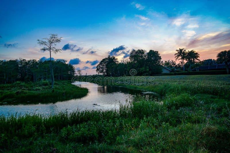 Ποταμός στο έλος στο ηλιοβασίλεμα στοκ φωτογραφίες με δικαίωμα ελεύθερης χρήσης