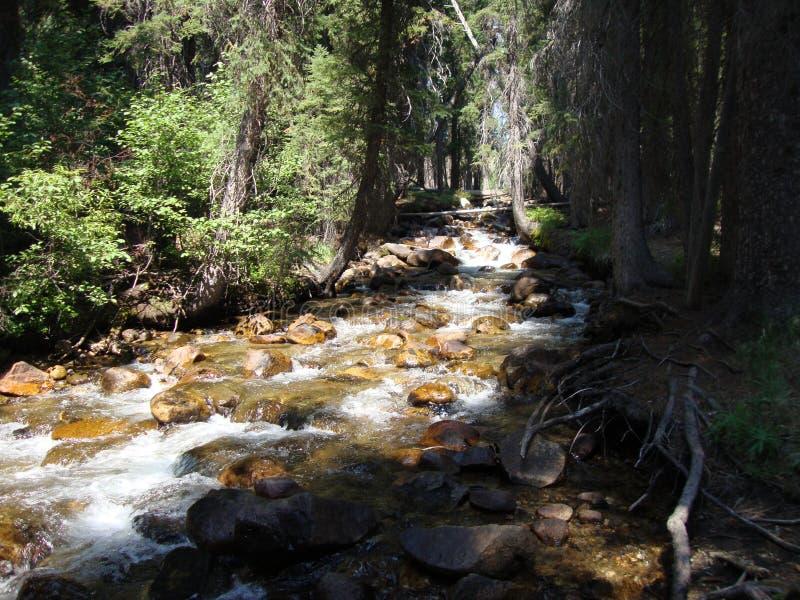 Ποταμός στο Sawtooths στοκ εικόνες με δικαίωμα ελεύθερης χρήσης