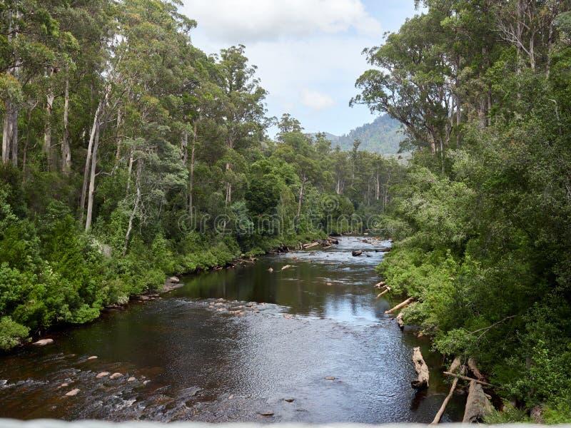 Ποταμός Τασμανία Αυστραλία στοκ εικόνες