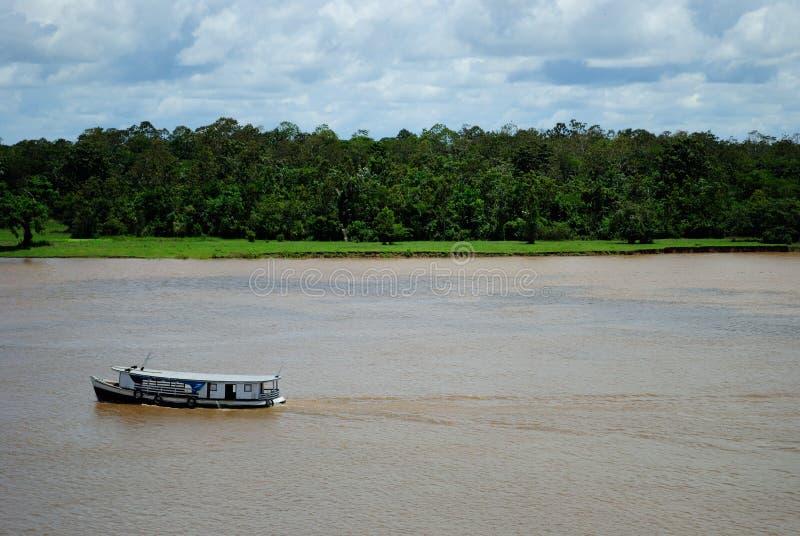 ποταμός της Αμαζώνας στοκ εικόνα με δικαίωμα ελεύθερης χρήσης
