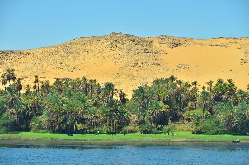 ποταμός του Νείλου στοκ φωτογραφία με δικαίωμα ελεύθερης χρήσης