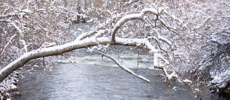 Ποταμός του Carson στοκ φωτογραφία με δικαίωμα ελεύθερης χρήσης
