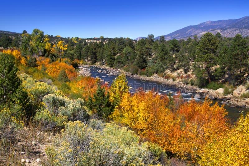 Ποταμός των Buena Vista στοκ εικόνα
