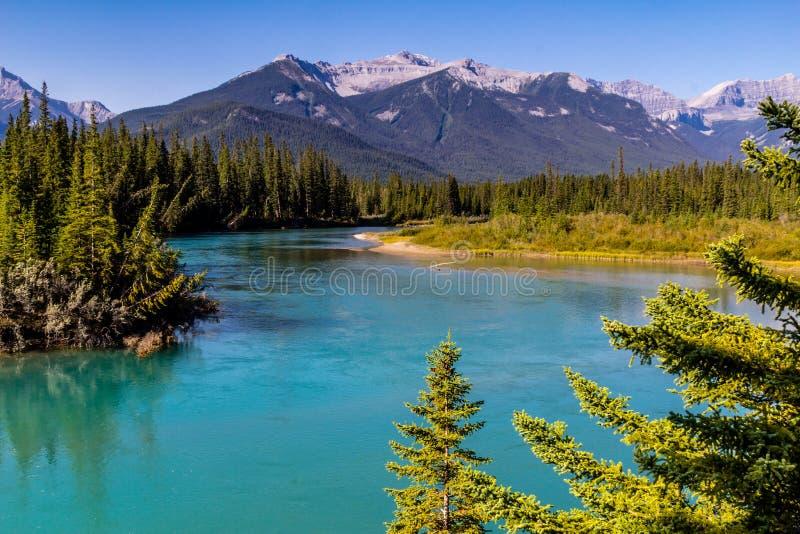 Ποταμός τόξων, εθνικό πάρκο Banff, Αλμπέρτα, Καναδάς στοκ φωτογραφία