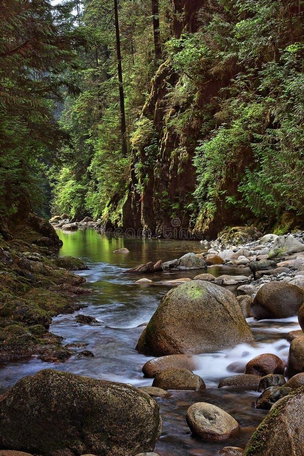 ποταμός φαραγγιών lynn στοκ φωτογραφίες