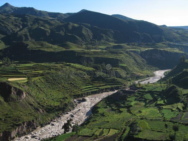 ποταμός colca φαραγγιών στοκ εικόνα