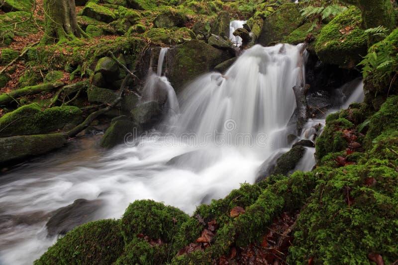 ποταμός dartmoor στοκ εικόνες