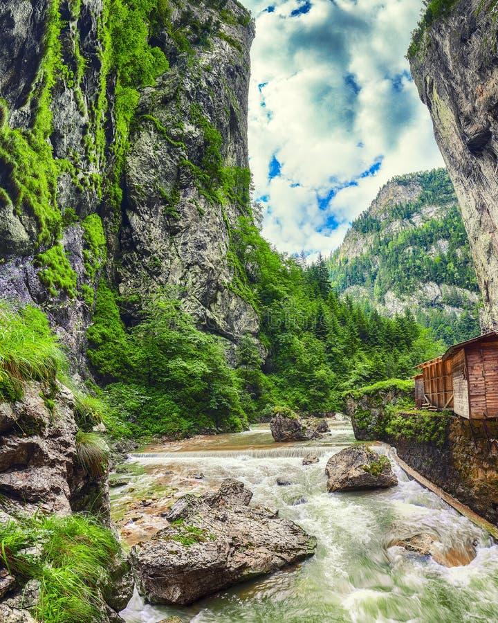 Ποταμός Fast Mountain στο φαράγγι Bicaz/Cheile Bicazului στοκ εικόνα με δικαίωμα ελεύθερης χρήσης