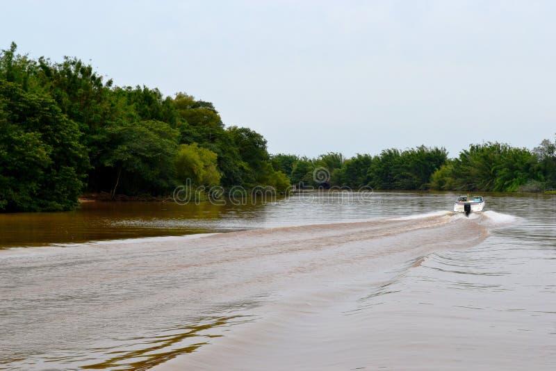 Ποταμός GuaÃba στοκ φωτογραφία με δικαίωμα ελεύθερης χρήσης