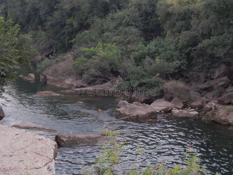 Ποταμός Jamjir σε JAMWALA GIR στοκ εικόνα