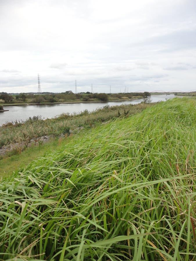 Ποταμός Kokai και ουρανός φθινοπώρου στοκ φωτογραφία με δικαίωμα ελεύθερης χρήσης
