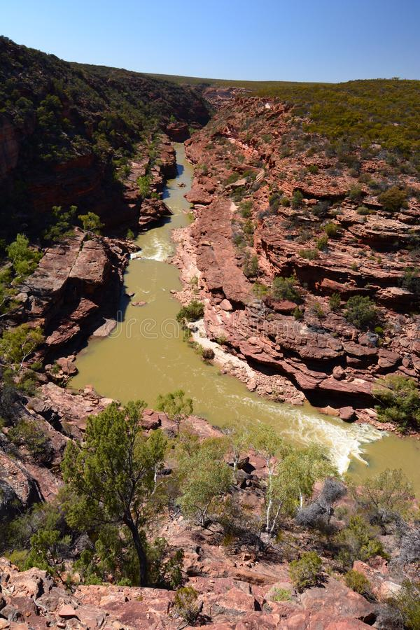 Ποταμός Murchinson όπως βλέπει από την επιφυλακή κάμψεων Ζ Εθνικό πάρκο Kalbarri Δυτική Αυστραλία Αυστραλοί στοκ εικόνα με δικαίωμα ελεύθερης χρήσης