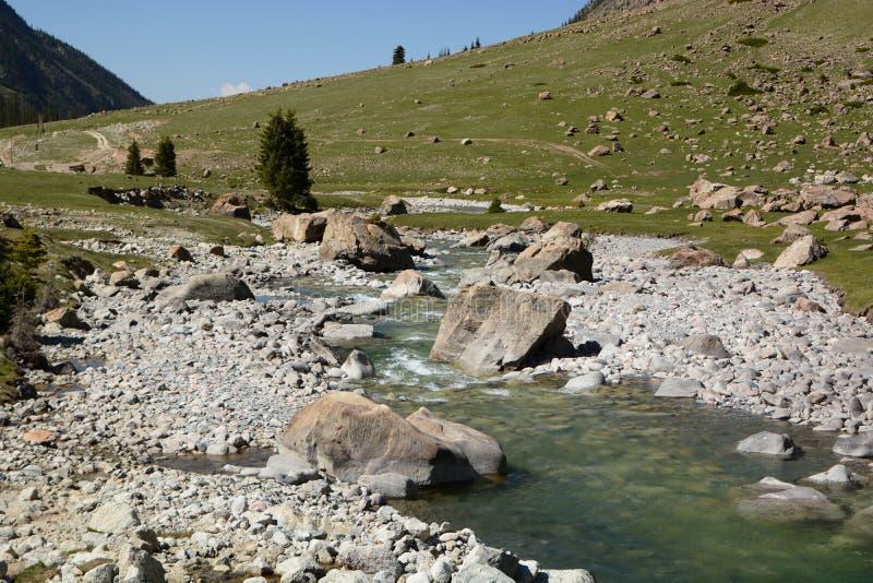 Ποταμός Naryn Κοιλάδα Barskoon Επαρχία issyk-Kul Κιργιστάν στοκ εικόνες με δικαίωμα ελεύθερης χρήσης