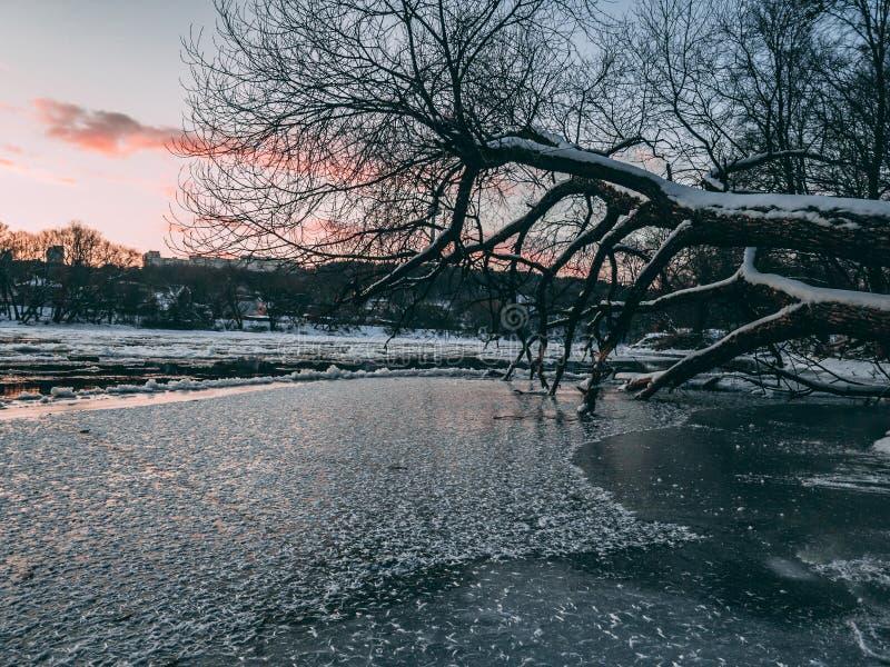 Ποταμός Neris κατά τη διάρκεια του ηλιοβασιλέματος στοκ εικόνα με δικαίωμα ελεύθερης χρήσης