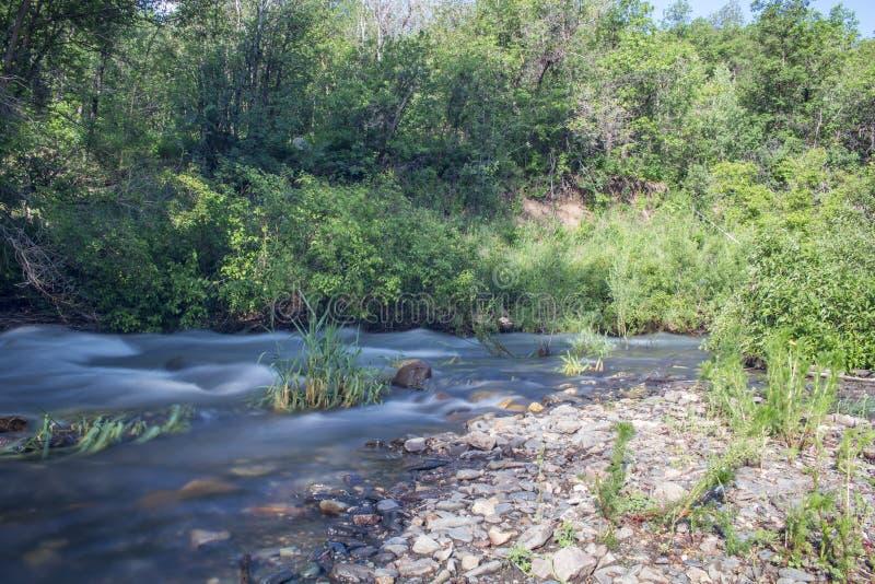 Ποταμός Ogden στοκ εικόνες με δικαίωμα ελεύθερης χρήσης