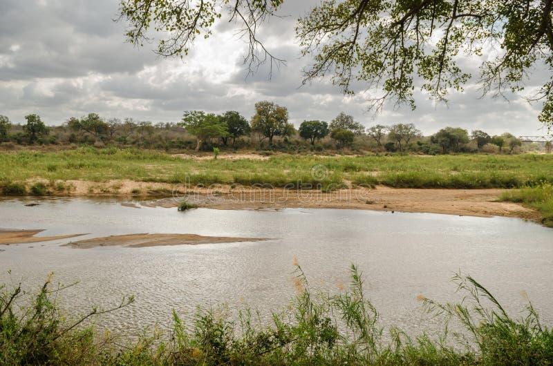 Ποταμός Olifants, εθνικό πάρκο Kruger, Νότια Αφρική στοκ φωτογραφία με δικαίωμα ελεύθερης χρήσης