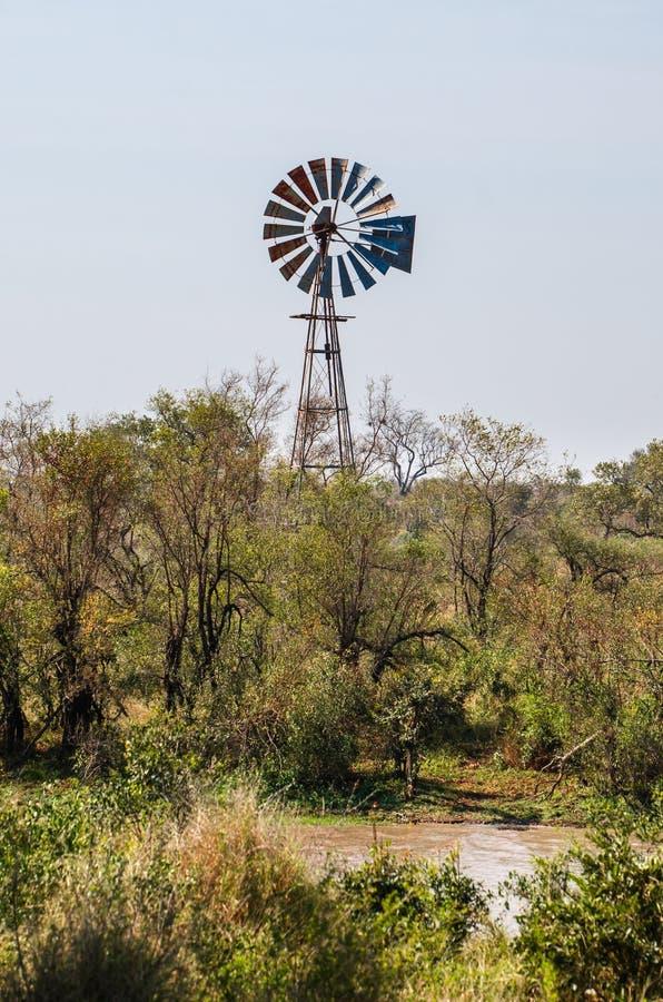 Ποταμός Olifants, εθνικό πάρκο Kruger, Νότια Αφρική στοκ φωτογραφίες με δικαίωμα ελεύθερης χρήσης