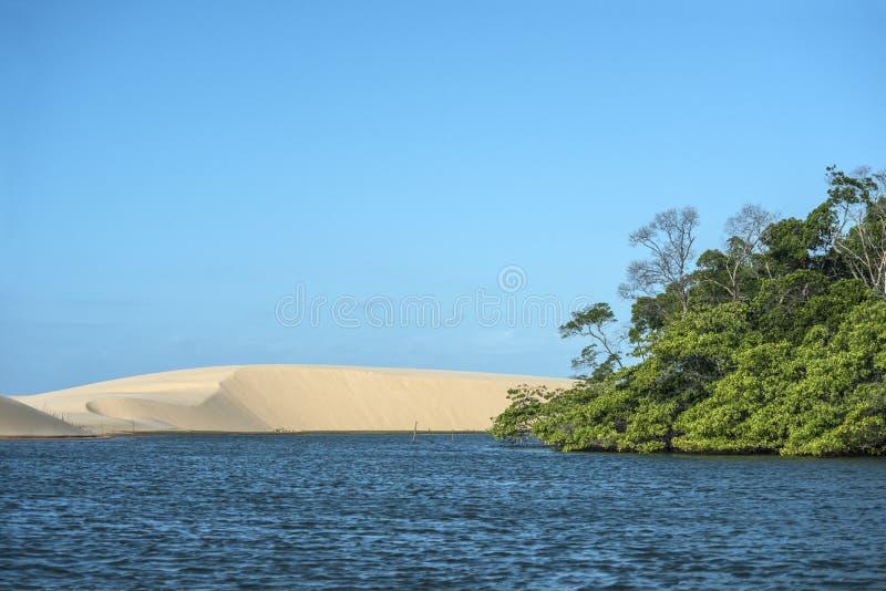Ποταμός Parnaiba, βορειοανατολική περιοχή της Βραζιλίας ` s στοκ εικόνες με δικαίωμα ελεύθερης χρήσης