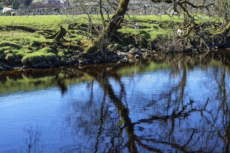 Ποταμός Ribble στοκ εικόνες με δικαίωμα ελεύθερης χρήσης