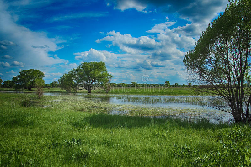 Ποταμός Seym στοκ φωτογραφία με δικαίωμα ελεύθερης χρήσης