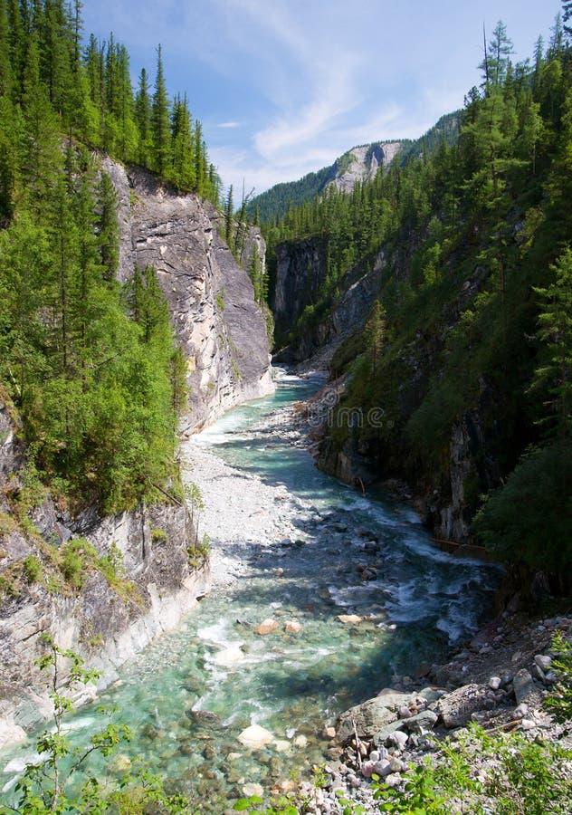 Ποταμός Sumak - sayan βουνά - buryatia Ρωσία στοκ φωτογραφίες με δικαίωμα ελεύθερης χρήσης