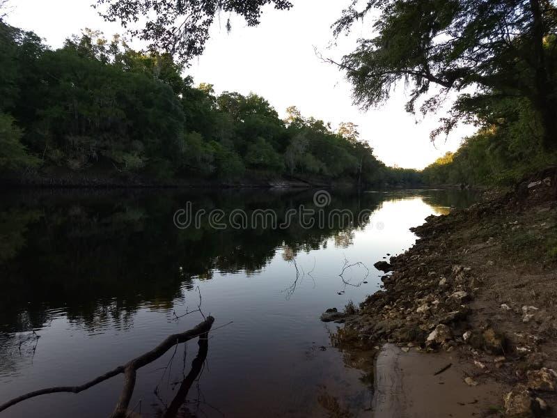 Ποταμός Suwannee στοκ εικόνα με δικαίωμα ελεύθερης χρήσης