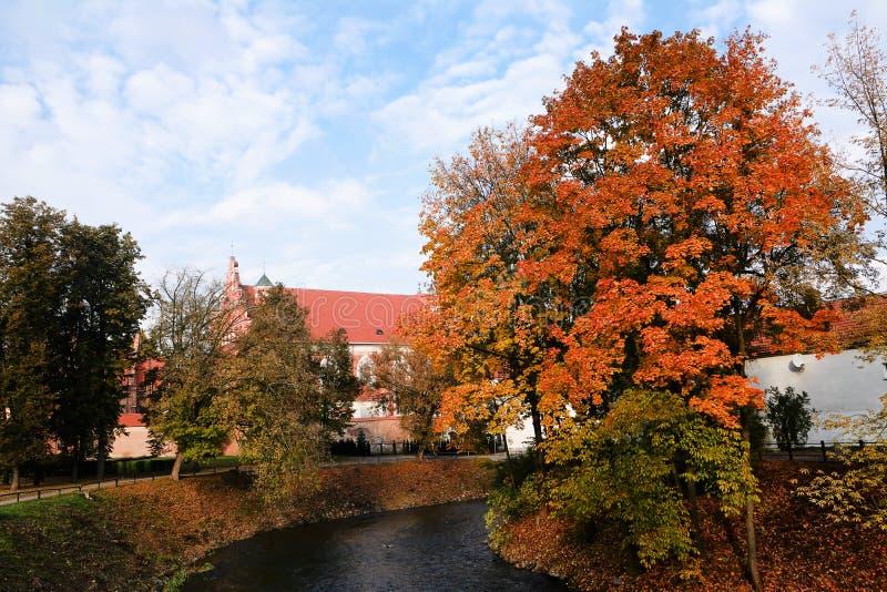 Ποταμός Vilnia το φθινόπωρο στοκ φωτογραφία με δικαίωμα ελεύθερης χρήσης