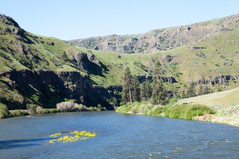 Ποταμός Yakima στοκ εικόνα με δικαίωμα ελεύθερης χρήσης