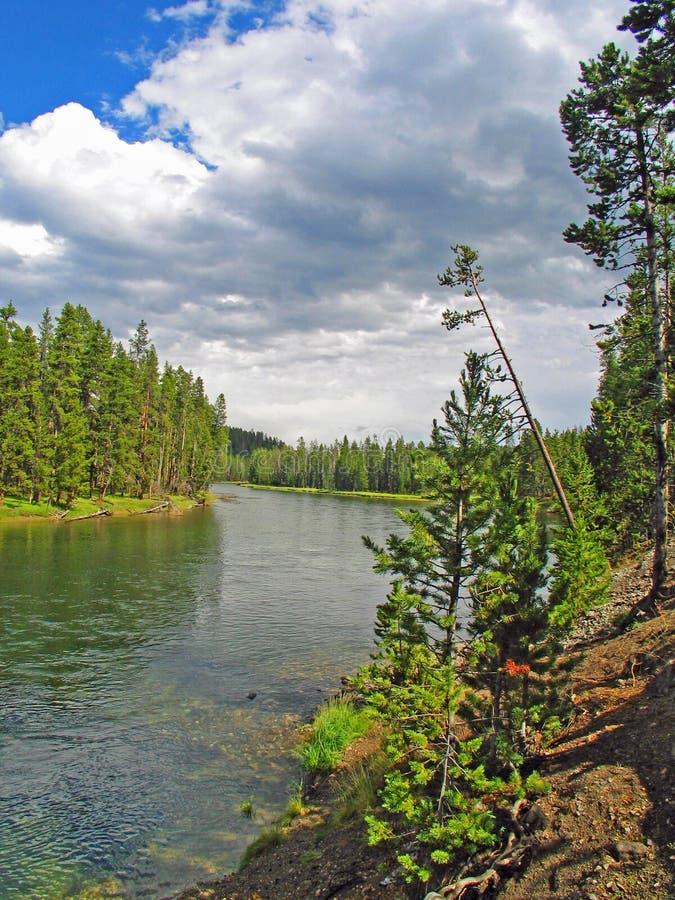 Ποταμός Yellowstone που κοιτάζει πίσω στη λίμνη Yellowstone στοκ φωτογραφία με δικαίωμα ελεύθερης χρήσης