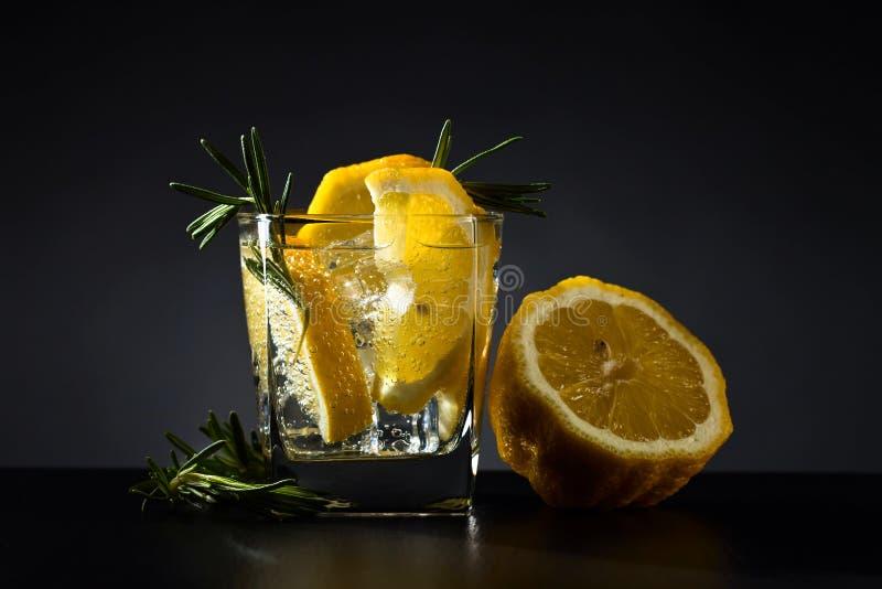 Ποτό με το τονωτικό, το λεμόνι και το δεντρολίβανο στοκ εικόνες