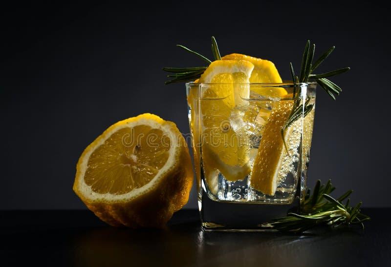 Ποτό με το τονωτικό, το λεμόνι και το δεντρολίβανο στοκ φωτογραφίες