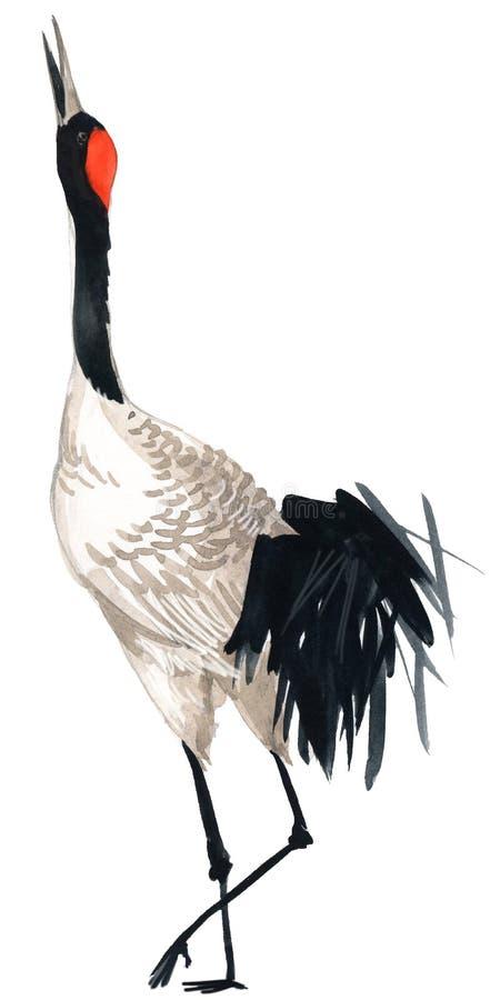 Πουλί γερανών Watercolor ελεύθερη απεικόνιση δικαιώματος